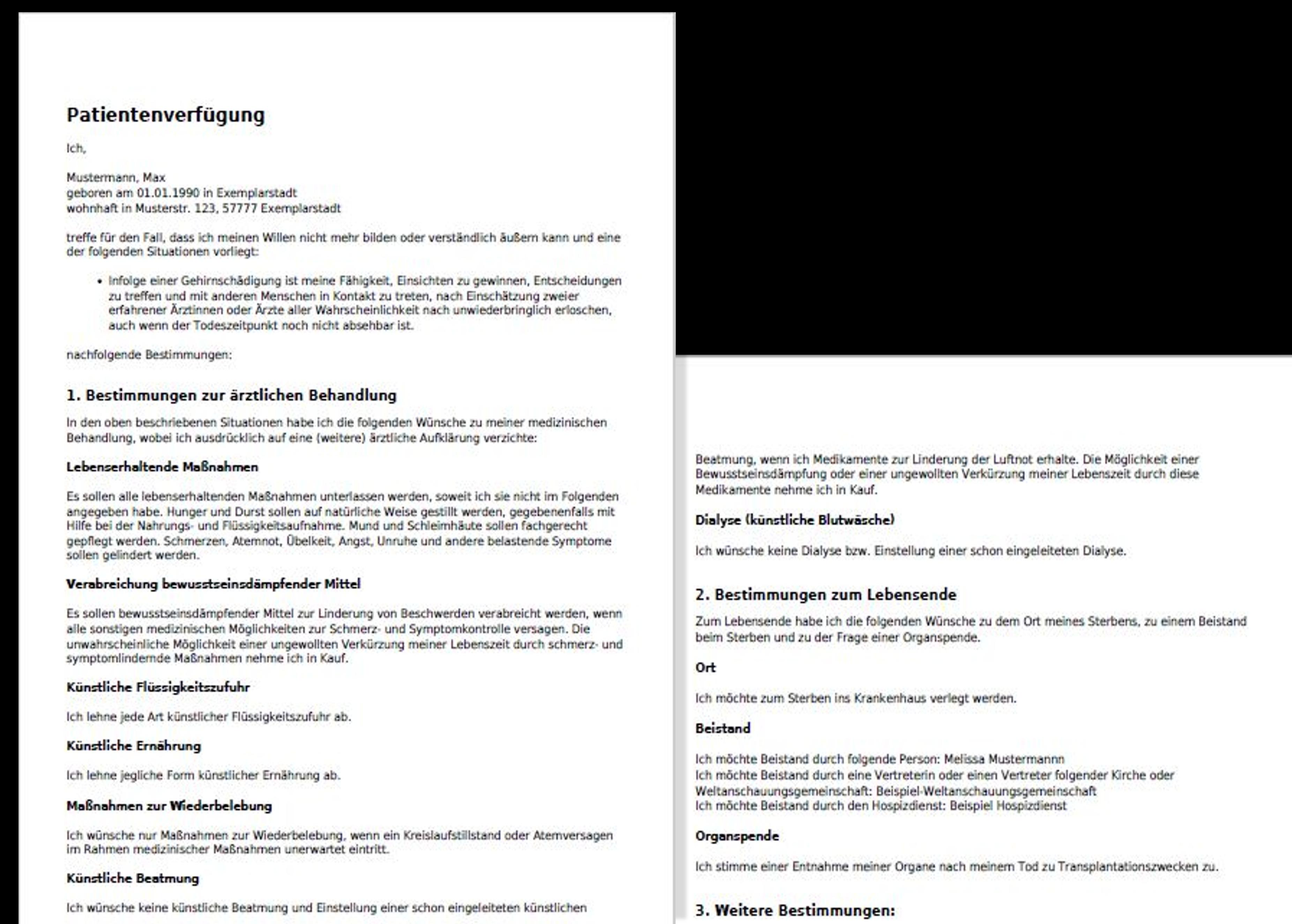 Beispiel der fertigen PDF der Patientenverfügung - Zur selbstbestimmten Behandlung im Falle der Entscheidungsunfähigkeit